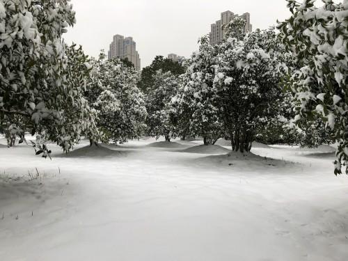 wuhan-snow.jpg